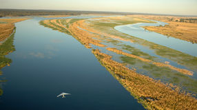 Низкоуровневое река Chobe Стоковые Изображения RF