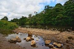 Низкоуровневое сельское река Стоковые Фото