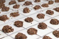 Никакие испеченные печенья не установили в строки Стоковые Фотографии RF