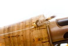 Нимфа уха зайцев на мухе штанге Стоковое Изображение RF
