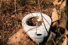 Ничего внешний гальюн в крышке леса, туалет стоковые фотографии rf