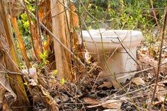 Ничего внешний гальюн в крышке леса, туалет стоковые изображения rf