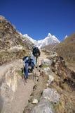 ничходящие hikers вымачивают женщин тропки Стоковое фото RF
