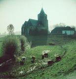Нидерландская сельская местность стоковые изображения rf