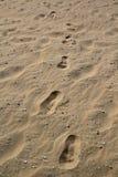 Нидерланды scheveningen пляжа Стоковое Изображение RF