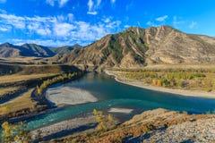 дни altai продолжают лето гор стоковое изображение rf