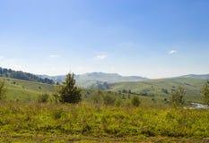 дни altai продолжают лето гор Стоковые Изображения