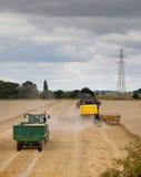 Новая жатка зернокомбайна Голландии Стоковые Изображения RF