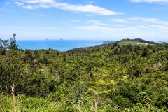 Новая Зеландия в лете Стоковая Фотография RF