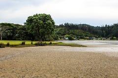 Новая Зеландия в лете Стоковые Фото