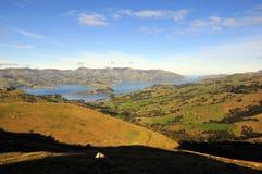Новая Зеландия Стоковые Изображения
