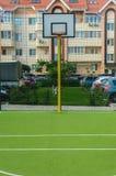 Новая земля спорт с кольцом bassetol и искусственной зеленой бухтой Стоковые Фото