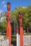 Новая Зеландия, маорийское Fenz стоковое изображение