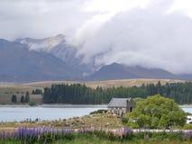 Новая Зеландия 8 - озеро Стоковая Фотография