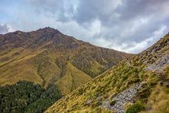 Новая Зеландия 4 стоковая фотография