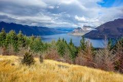 Новая Зеландия 7 Стоковая Фотография