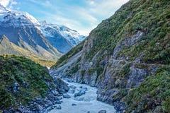 Новая Зеландия 9 Стоковая Фотография