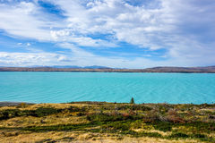 Новая Зеландия 45 стоковые фотографии rf