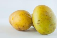 Новая картошка изолированная на белом конце предпосылки вверх Стоковое Изображение RF