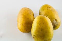 Новая картошка изолированная на белом конце предпосылки вверх Стоковая Фотография