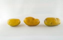 Новая картошка изолированная на белом конце предпосылки вверх Стоковые Фото