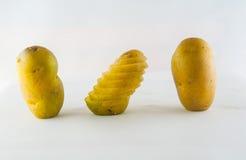 Новая картошка изолированная на белом конце предпосылки вверх Стоковые Фотографии RF