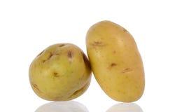 Новая картошка Стоковая Фотография RF