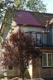 новая крыша вниз Стоковое Изображение RF