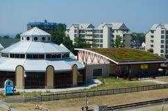 Крыша завода в реальном маштабе времени Eco содружественная Стоковые Фото