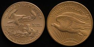 Новая монетка орла золота США против Старая монетка орла двойника золота США Стоковая Фотография RF