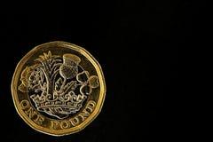 Новая одна монетка фунта Стоковые Изображения RF