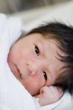 новая принесенная младенцем Стоковые Изображения RF