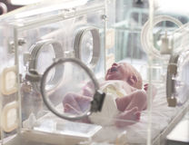 новая принесенная младенцем Стоковая Фотография RF