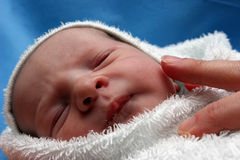 новая принесенная младенцем Стоковые Изображения