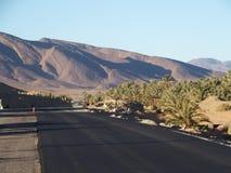 Новая черная дорога асфальта и ландшафт зеленых пальм в оазисе, центральном Марокко в старой деревне Oulad около города Zagora Стоковая Фотография
