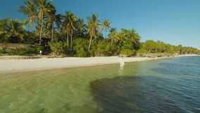 Новобрачные в белых одеждах гуляют к берегу Вид с воздуха острова побережья Bohol дел philippines видеоматериал