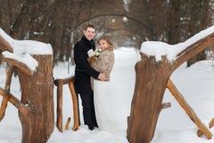 Новобрачные пар идя в лес зимы Стоковые Фото
