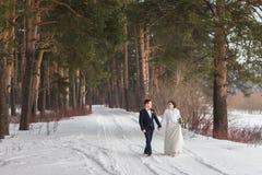 Новобрачные пар идя в лес зимы Стоковое Изображение