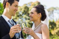 Новобрачные провозглашать каннелюры шампанского на парке Стоковое фото RF