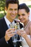 Новобрачные провозглашать каннелюры шампанского на парке Стоковые Изображения