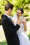 Новобрачные провозглашать каннелюры шампанского на парке Стоковая Фотография