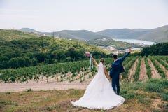 Новобрачные счастливы быть совместно, держат руки ` s одина другого плотно и наслаждаются жизнью Жених и невеста в конце концов Стоковые Изображения RF
