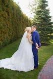 Новобрачные целуя на зеленом луге Стоковая Фотография