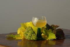 Новое вино 04 Стоковое Фото