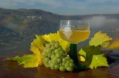 Новое вино 06 Стоковое фото RF