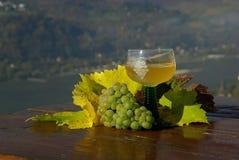 Новое вино Стоковое Изображение