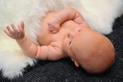 Ново - принесенная крышка младенца белой шерстью Стоковые Изображения RF