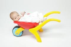 Ново - рожденный младенец лежа в тачке Стоковое Изображение RF