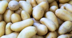 Новые картошки в корзине на органическом рынке города Стоковые Изображения