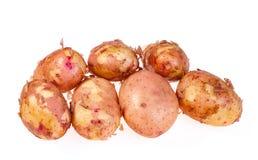 Новые картошки на белой предпосылке Стоковая Фотография